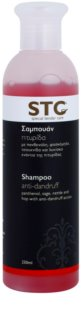 STC Hair Anti - Dandruff Shampoo