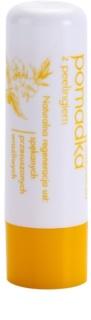 Sylveco Lip Care Lip Balm With Scrubing Effect