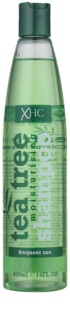Tea Tree Hair Care Hydraterende Shampoo  voor Iedere Dag