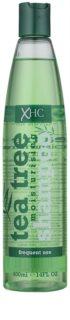Tea Tree Hair Care champô hidratante  para uso diário