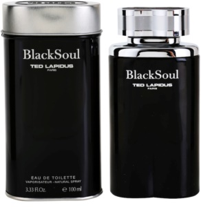 Ted Lapidus Black Soul Eau de Toilette für Herren 100 ml