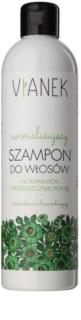 Vianek Energizing sanftes Shampoo für jeden Tag für normales bis fettiges Haar