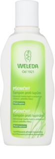 Weleda Hair Care champú de trigo anticaspa
