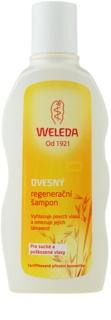 Weleda Oat champô regenerador para cabelo seco a danificado