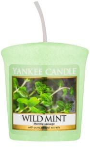 Yankee Candle Wild Mint votivní svíčka 49 g