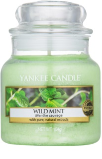 Yankee Candle Wild Mint vela perfumada 104 g Classic pequeno
