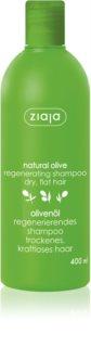 Ziaja Natural Olive відновлюючий шампунь для всіх типів волосся