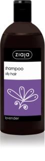 Ziaja Family Shampoo шампунь для жирного волосся