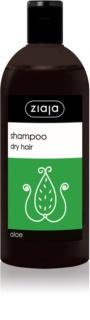 Ziaja Family Shampoo шампунь для сухого та тьямного волосся з алое вера
