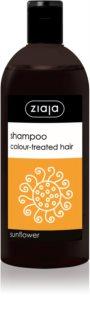 Ziaja Family Shampoo champô para cabelo pintado