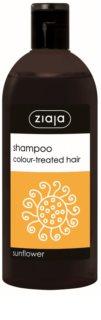 Ziaja Family Shampoo šampon pro barvené vlasy
