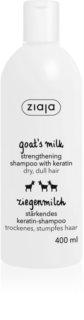 Ziaja Goat's Milk sampon fortifiant pentru par uscat si deteriorat