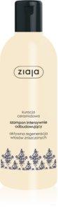 Ziaja Ceramides Intensive Regenerating Shampoo
