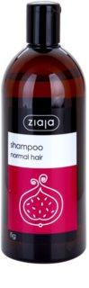 Ziaja Family Shampoo šampon pro normální vlasy