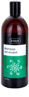 Ziaja Family Shampoo šampon proti lupům