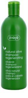 Ziaja Natural Olive szampon regenerujący do wszystkich rodzajów włosów