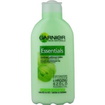 Garnier Essentials lait démaquillant pour peaux normales à mixtes (Cleansing Milk) 200 ml