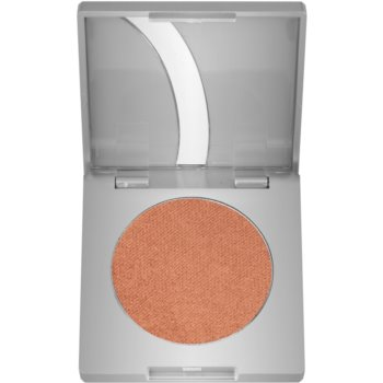 Kryolan Basic Face & Body blush teinte Bronze G Iridescent 2,5 g