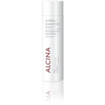 Alcina Dry and Damaged Hair trattamento rigenerante per capelli più forti Care Factor 1 (Care 5, Moisture 5) 150 ml