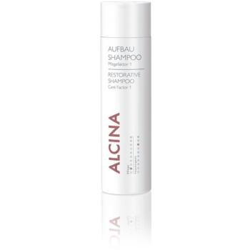 Alcina Dry and Damaged Hair shampoo rigenerante per uso quotidiano Care Factor 1 (Care 2, Moisture 8) 250 ml