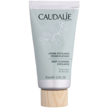 Caudalie Cleaners&Toners scrub di pulizia profonda per tutti i tipi di pelle 75 ml