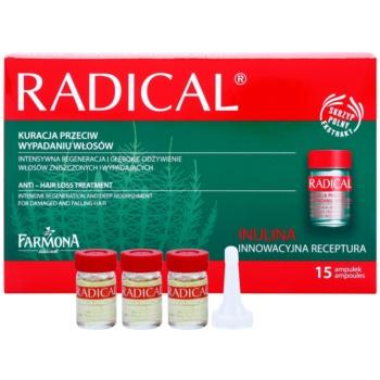 Farmona Radical Hair Loss trattamento anti-caduta dei capelli Horse Tail (Provitamine B5, Trichogen, Polyplant Hair, Inuline) 15x5 ml