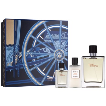 Hermès Terre D'Hermes kit regalo VI eau de toilette 100 ml + eau de toilette 12,5 ml + balsamo post-rasatura 40 ml