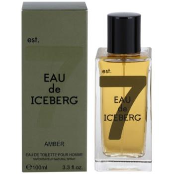 Iceberg Eau de Iceberg Amber eau de toilette per uomo 100 ml