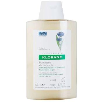 Klorane Centaurée shampoo per capelli biondi e grigi (Shampoo with Centaury) 200 ml