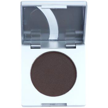 Kryolan Basic Eyes cipria colorata per sopracciglia colore Dark 3,5 g