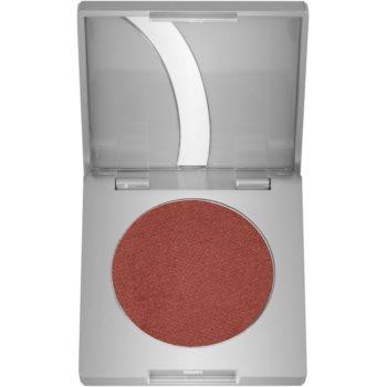 Kryolan Basic Eyes ombretti colore Chestnut G Iridescent 2,5 g
