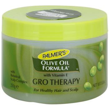 Palmer's Hair Olive Oil Formula gel rigenerante per rinforzare e stimolare la crescita dei capelli (Botanical Scalp Complex, Vitamin E, Extra Virgin Olive Oil) 250 g