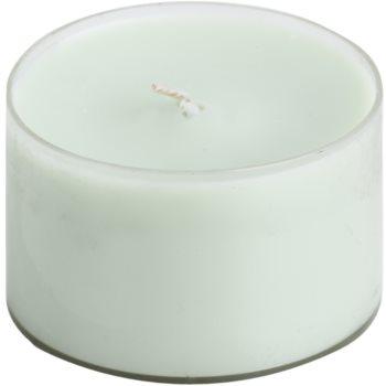 Price´s Green Tea candela profumata 123 g piccola