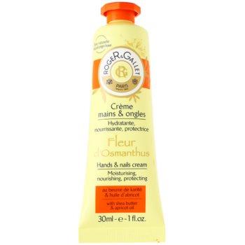 Roger & Gallet Fleur d´ Osmanthus crema per mani e unghie con burro di karité e olio di albicocche (Moisturizing, Nourishing, Protecting) 30 ml