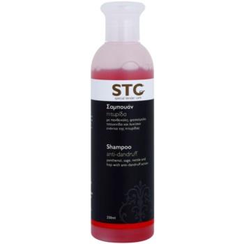 STC Hair shampoo antiforfora (With Panthenol, Sage, Nettle and Hop) 250 ml