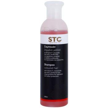 STC Hair shampoo per capelli tinti (With Vitamin F, Chamomile, Aloe Vera, Panthenol and Wheat Proteins) 250 ml