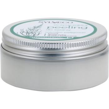 Sylveco Face Care scrub viso per chiudere i pori e ottenere un look opaco (Hypoallergenic) 75 ml