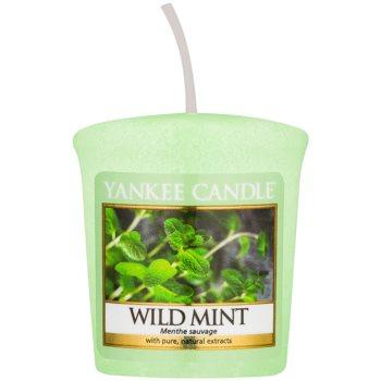 Yankee Candle Wild Mint candela votiva 49 g