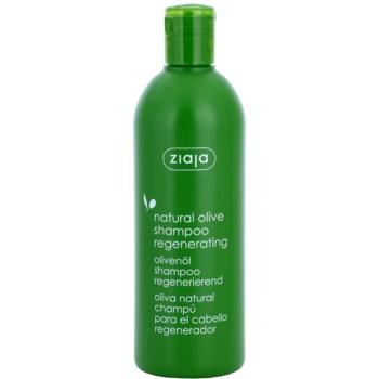 Ziaja Natural Olive shampoo rigenerante per tutti i tipi di capelli (Shampoo Regenerating) 400 ml