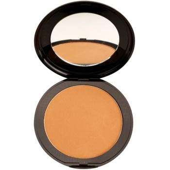 Academie Make-up Sun Kissed pulberi pentru evidentierea bronzului  19 g