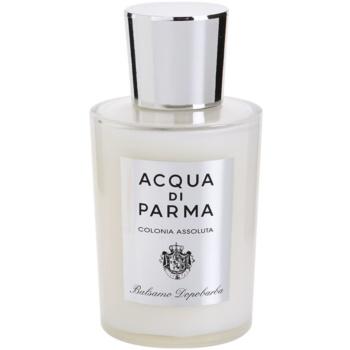 Acqua di Parma Colonia Assoluta bálsamo após barbear para homens 2