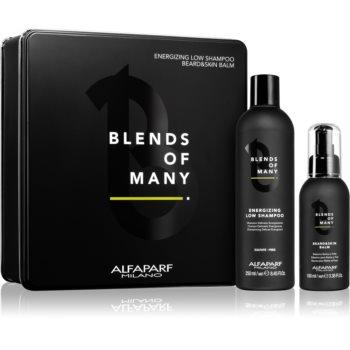 Alfaparf Milano Blends of Many set cadou (pentru barbati) imagine produs