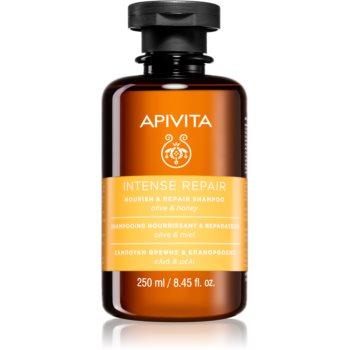 Apivita Holistic Hair Care Olive & Honey ?ampon intens hrãnitor imagine