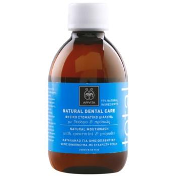 Apivita Natural Dental Care Total płyn do płukania jamy ustnej