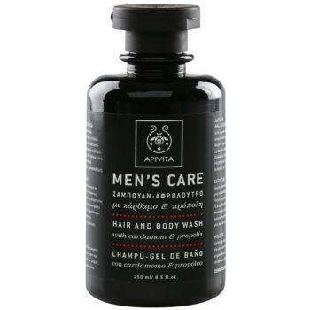 Fotografie Apivita Men's Care Cardamom & Propolis šampon a sprchový gel 2 v 1 250 ml