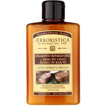 Athena's l'Erboristica шампунь з лляною  олійкою  для сухого або пошкодженого волосся