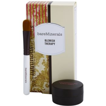 BareMinerals Treat корегуюча пудра для зменшення і запобігання недоліків шкіри зі щіточкою 1