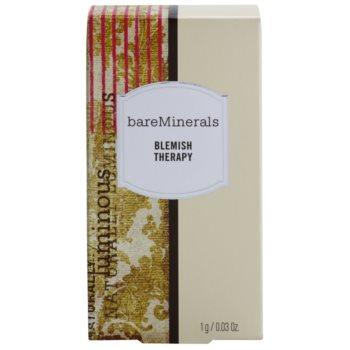 BareMinerals Treat корегуюча пудра для зменшення і запобігання недоліків шкіри зі щіточкою 2