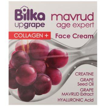 Bilka Mavrud Age Expert Collagen+ krema za obraz proti gubam s kolagenom 2