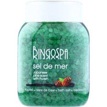 BingoSpa Japanese Pine Scent & Pu-erh sól morska do kąpieli